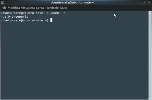 Schermata-ubuntu-mate@ubuntu-mate_ ~