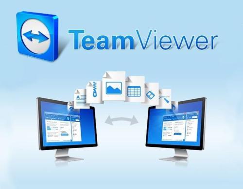 teamviewer.logo.hero